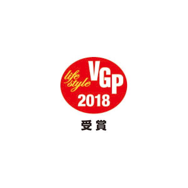 VGP2018_LS受賞.jpg